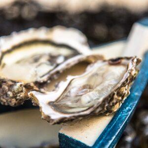 huitres de mesquer kercabellec – Les huîtres de Mesquer Penbé