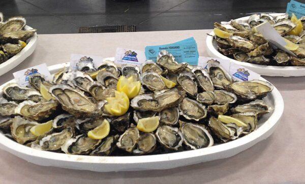 huitres2 – Les huîtres de Mesquer Penbé