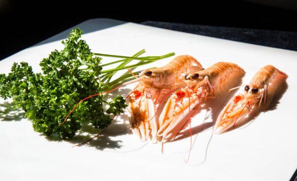 langoustines par romain fohanno huitres de mesquer – Les huîtres de Mesquer Penbé
