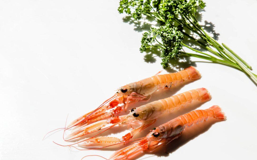 Comment réussir la cuisson des langoustines